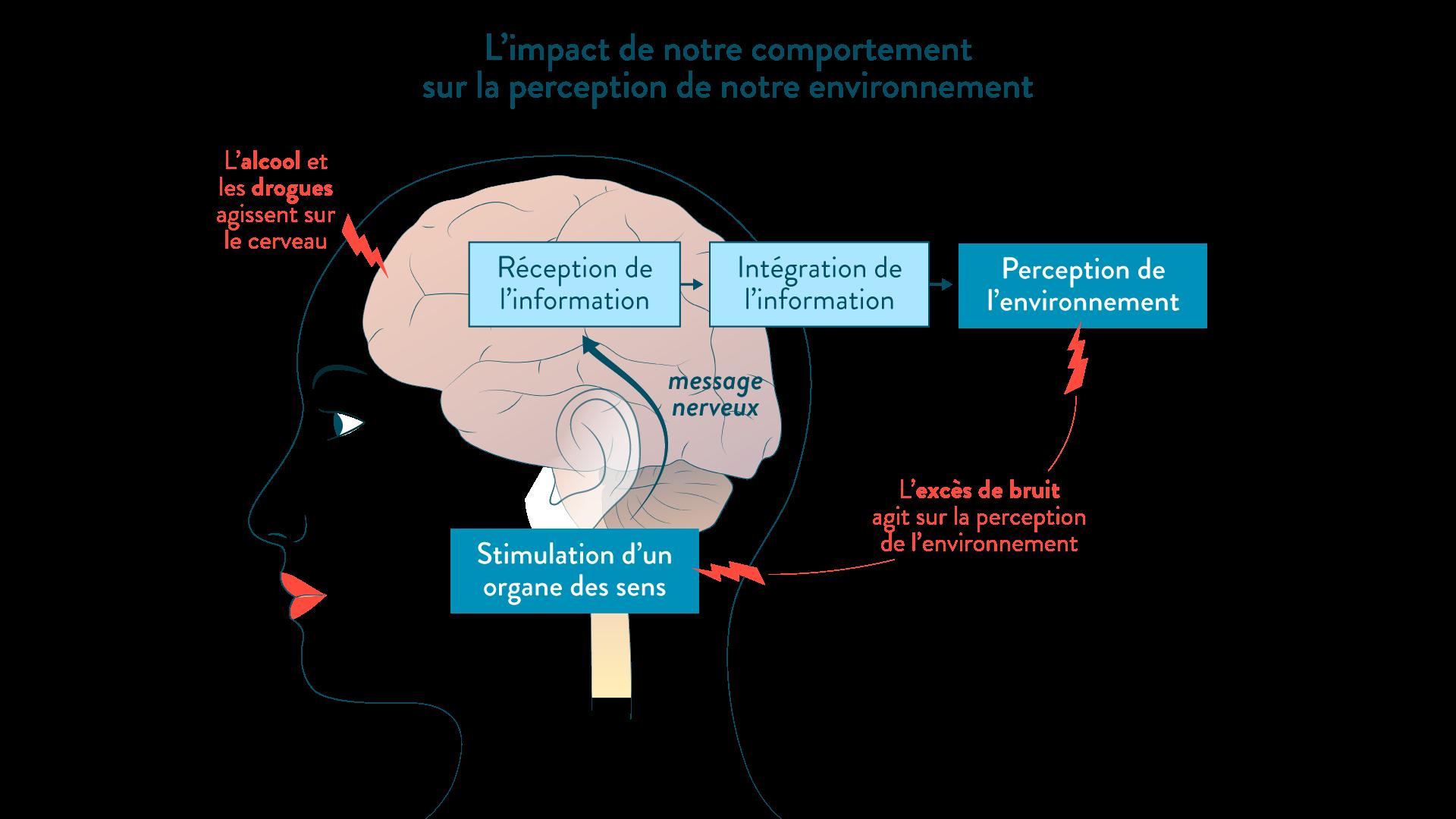 Schéma bilan : l'impact de notre comportement sur la perception de l'environnement