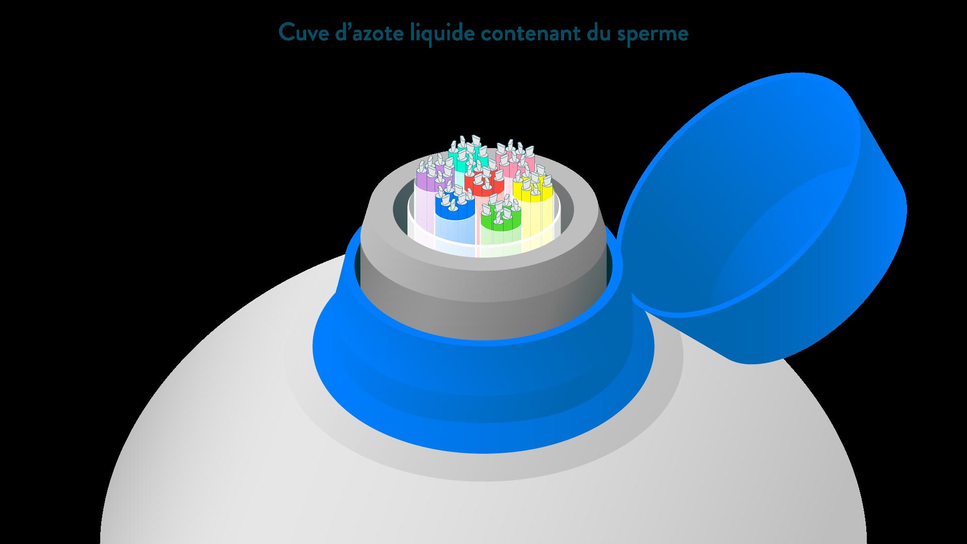 Cuve d'azote liquide contenant du sperme conservé