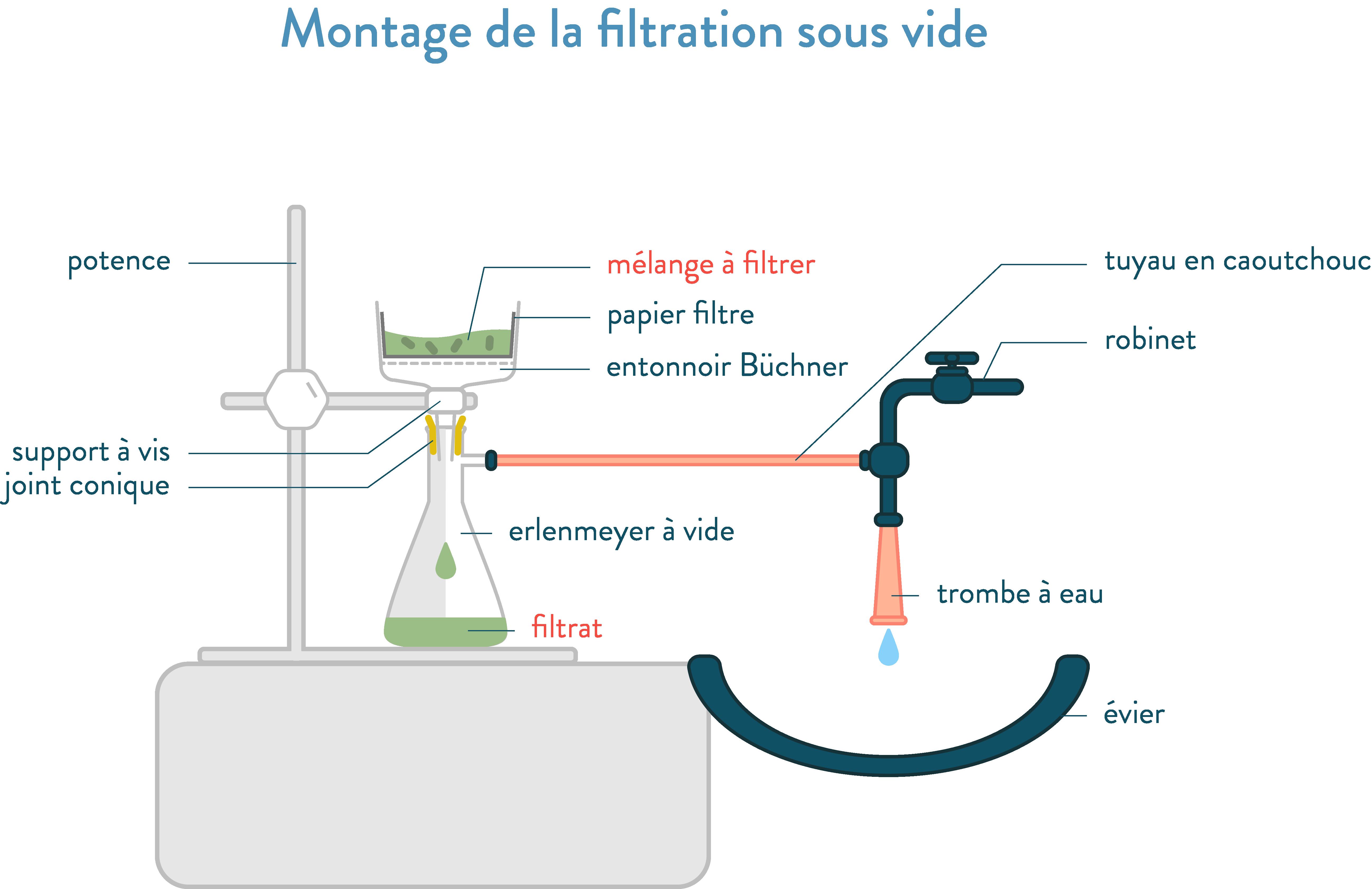 Montage de filtration sous vide, entonnoir Büchner, erlenmeyer