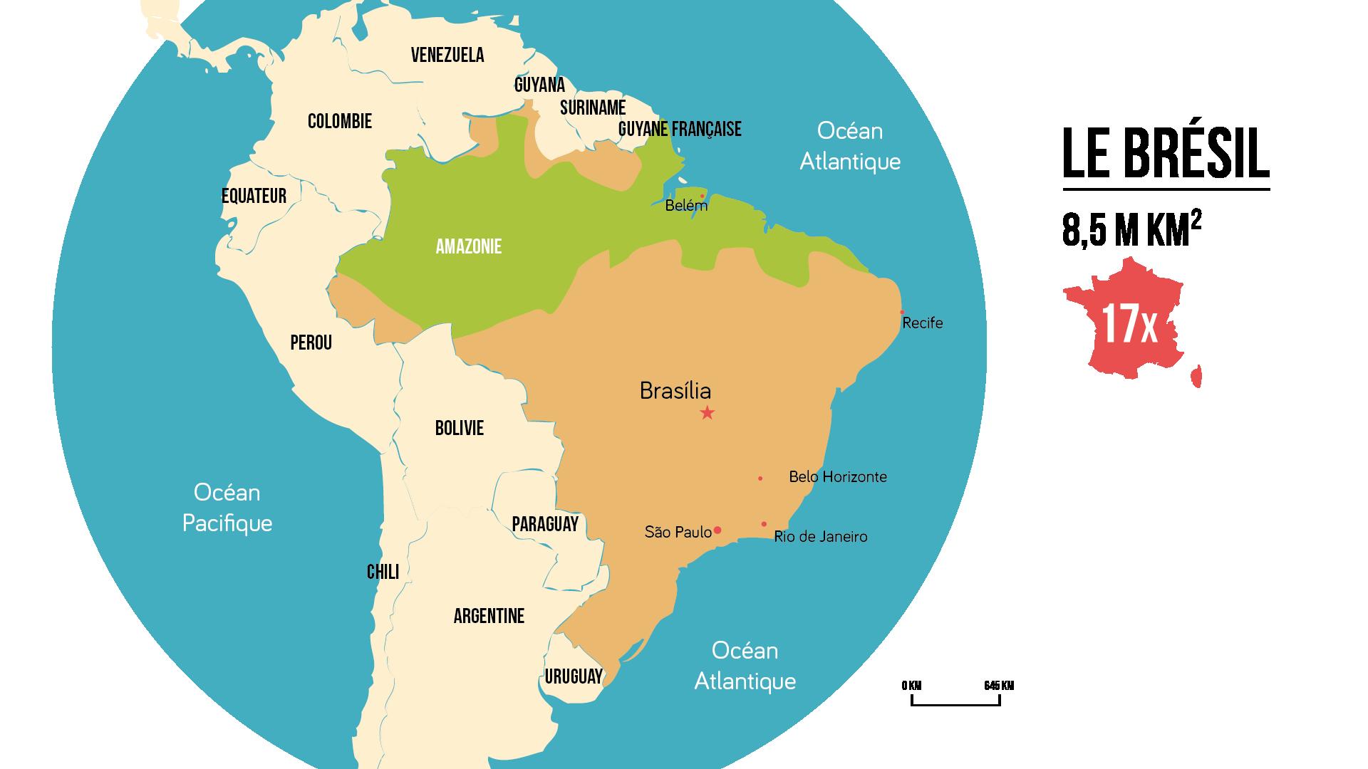 Le br sil r le mondial dynamiques territoriales fiche for Chambre de commerce du bresil en france