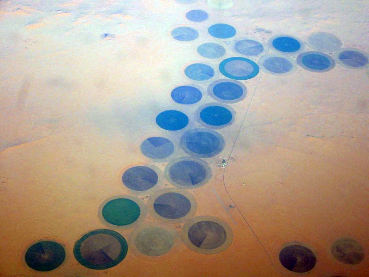 Exploitations agricoles dans le Sahara
