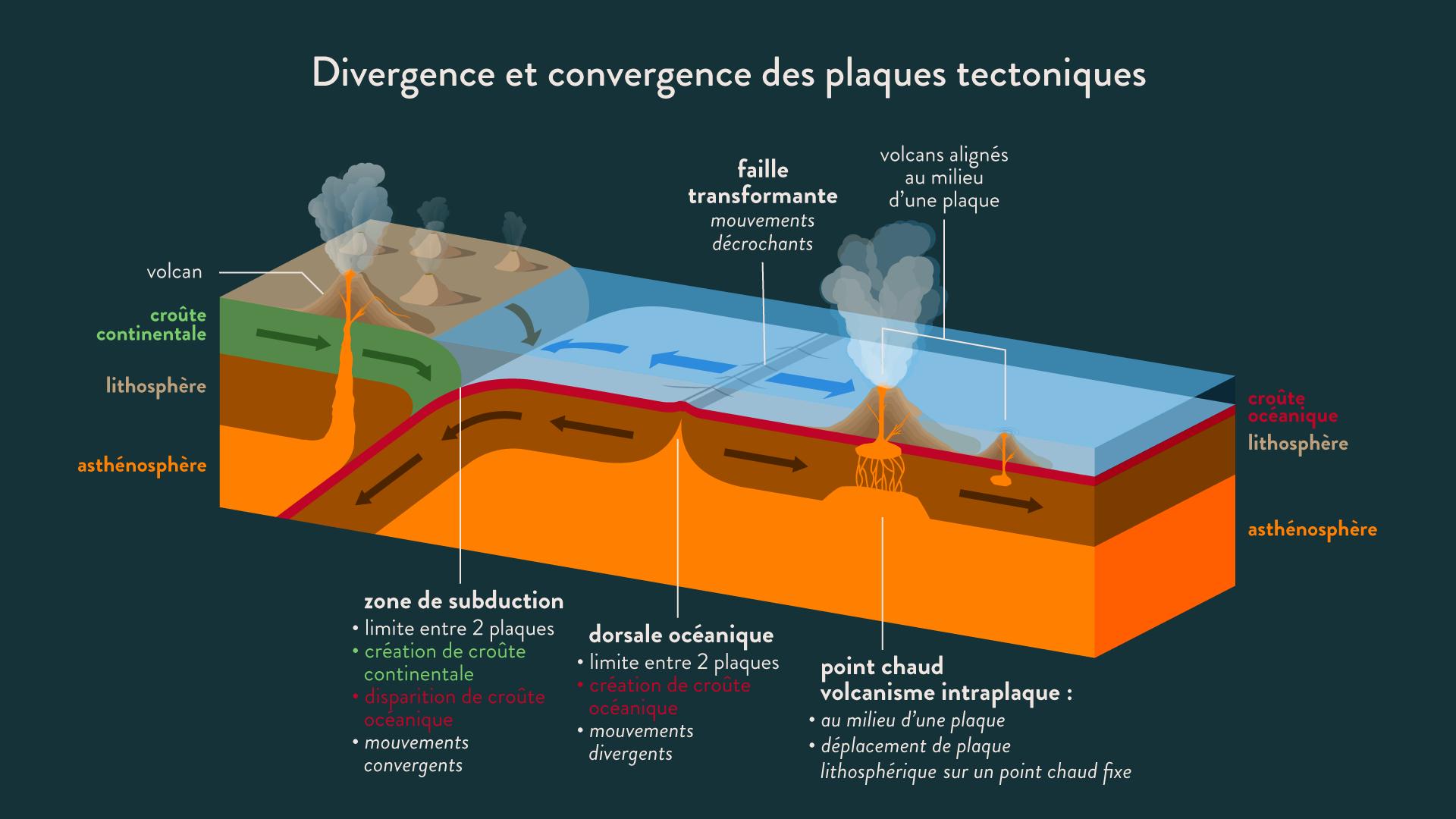 Divergence et convergence des plaques tectoniques