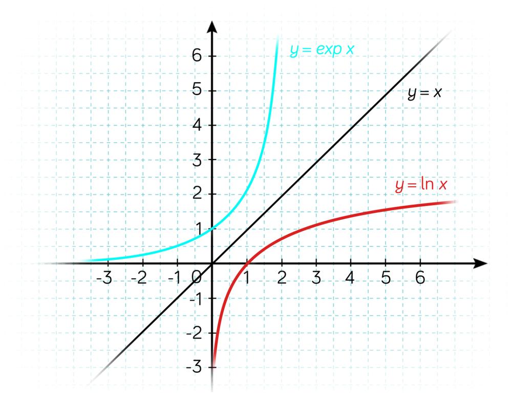 Symétrie des courbes de la fonction exponentielle et de la fonction logarithme népérien-math-tle