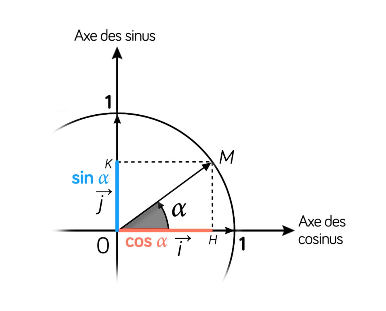 Cercle trigonométrique, sinus et cosinus - maths - tle