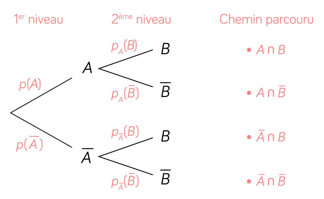 arbre de probabilités mathématiques terminale ES L