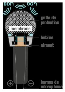 Schéma d'un microphone physique-chimie terminale
