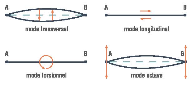 Les quatre modes vibratoires des cordes physique-chimie terminale