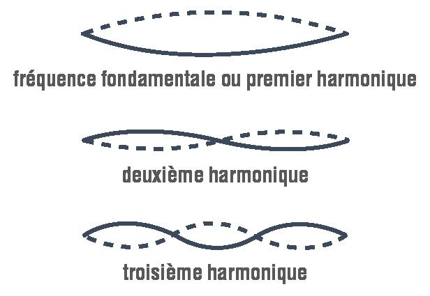 fréquence fondamentale d'une corde et deux harmmoniques