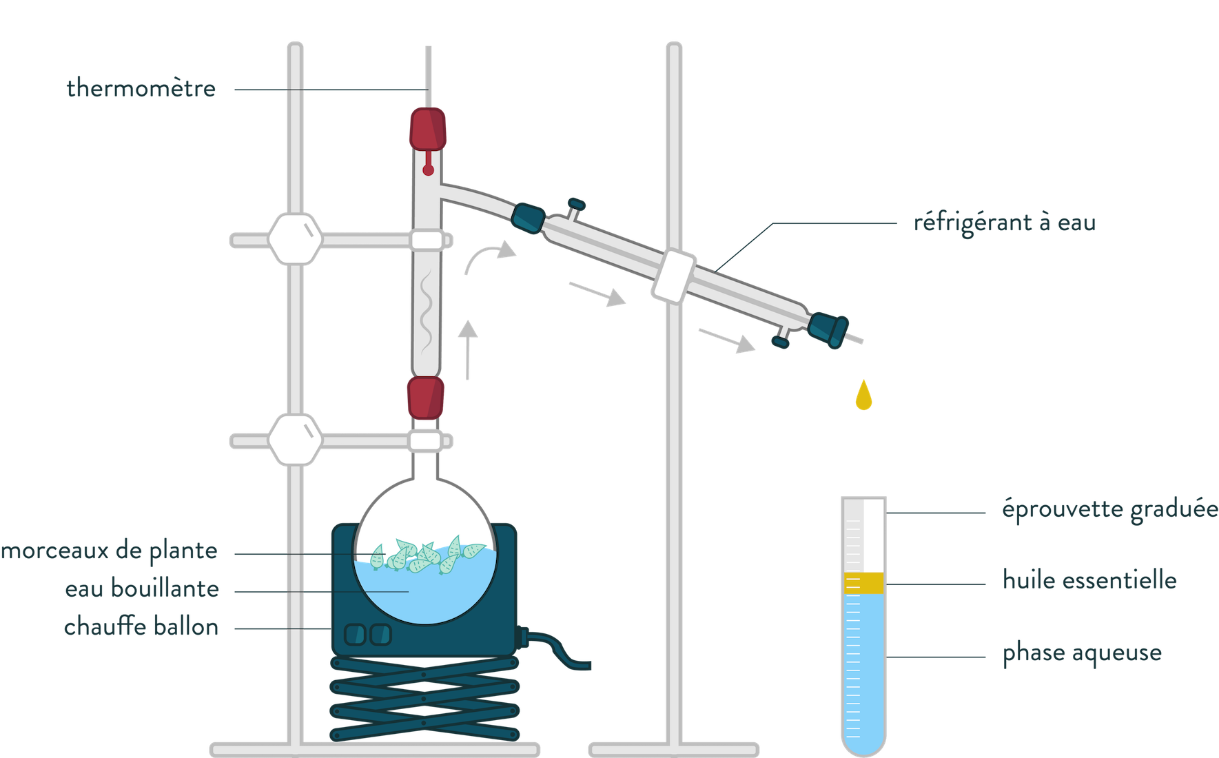 hydrodistillation