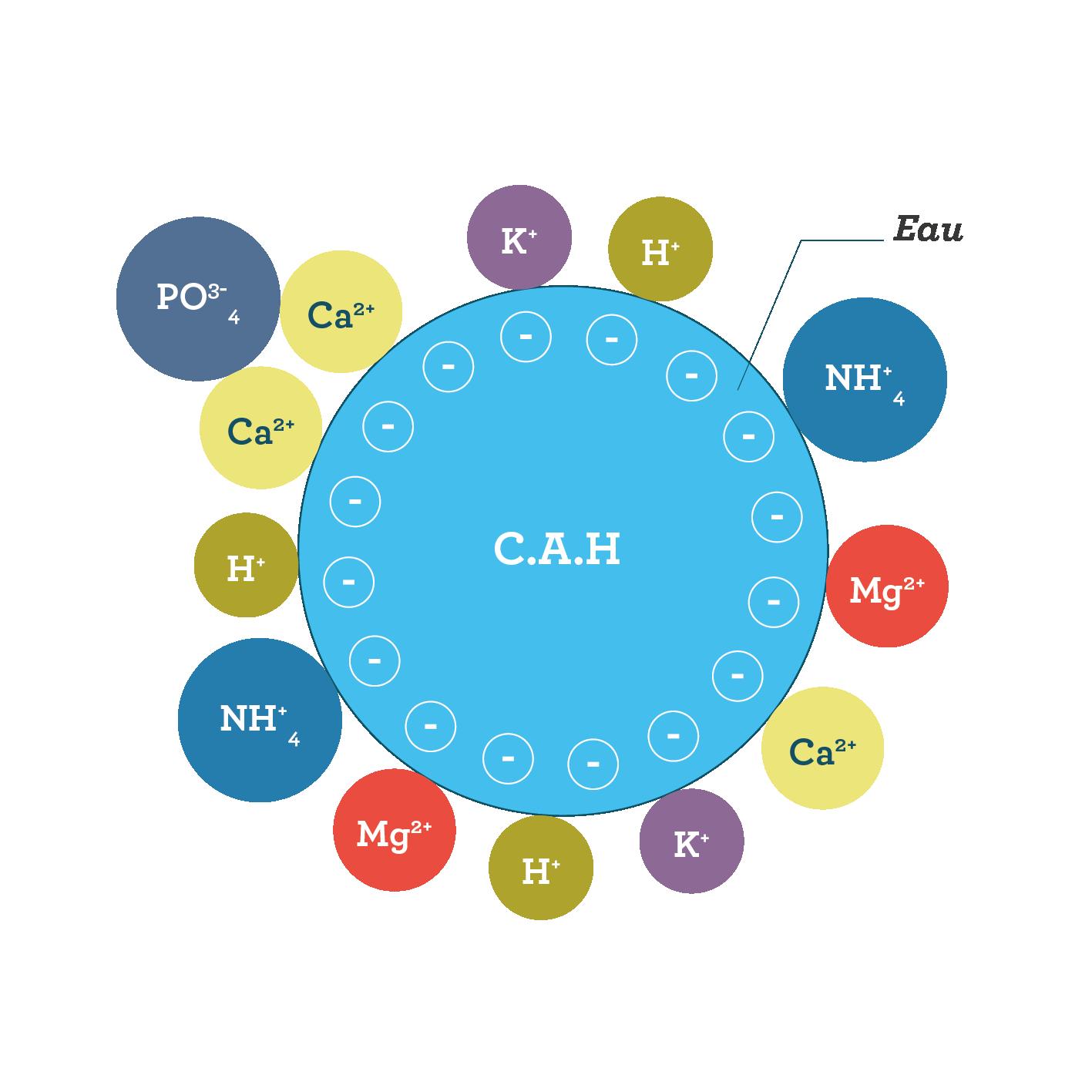 Le CAH sciences première
