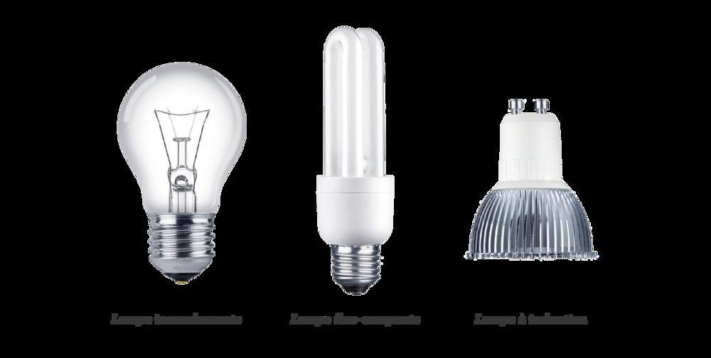 Comparatif de 3 ampoules différentes sciences premières