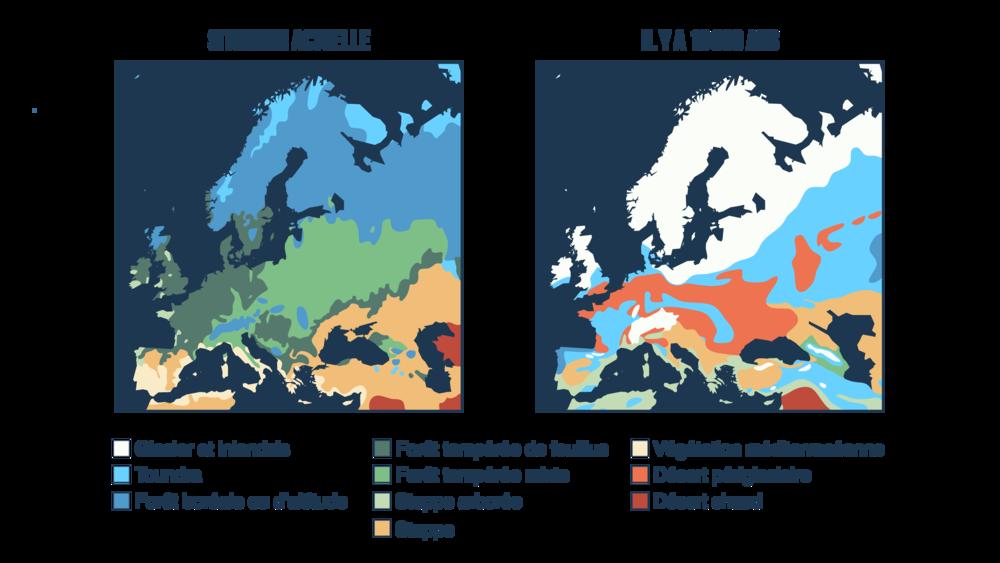 Évolution de la couverture végétale en Europe entre la situation actuelle et il y a18000 ans