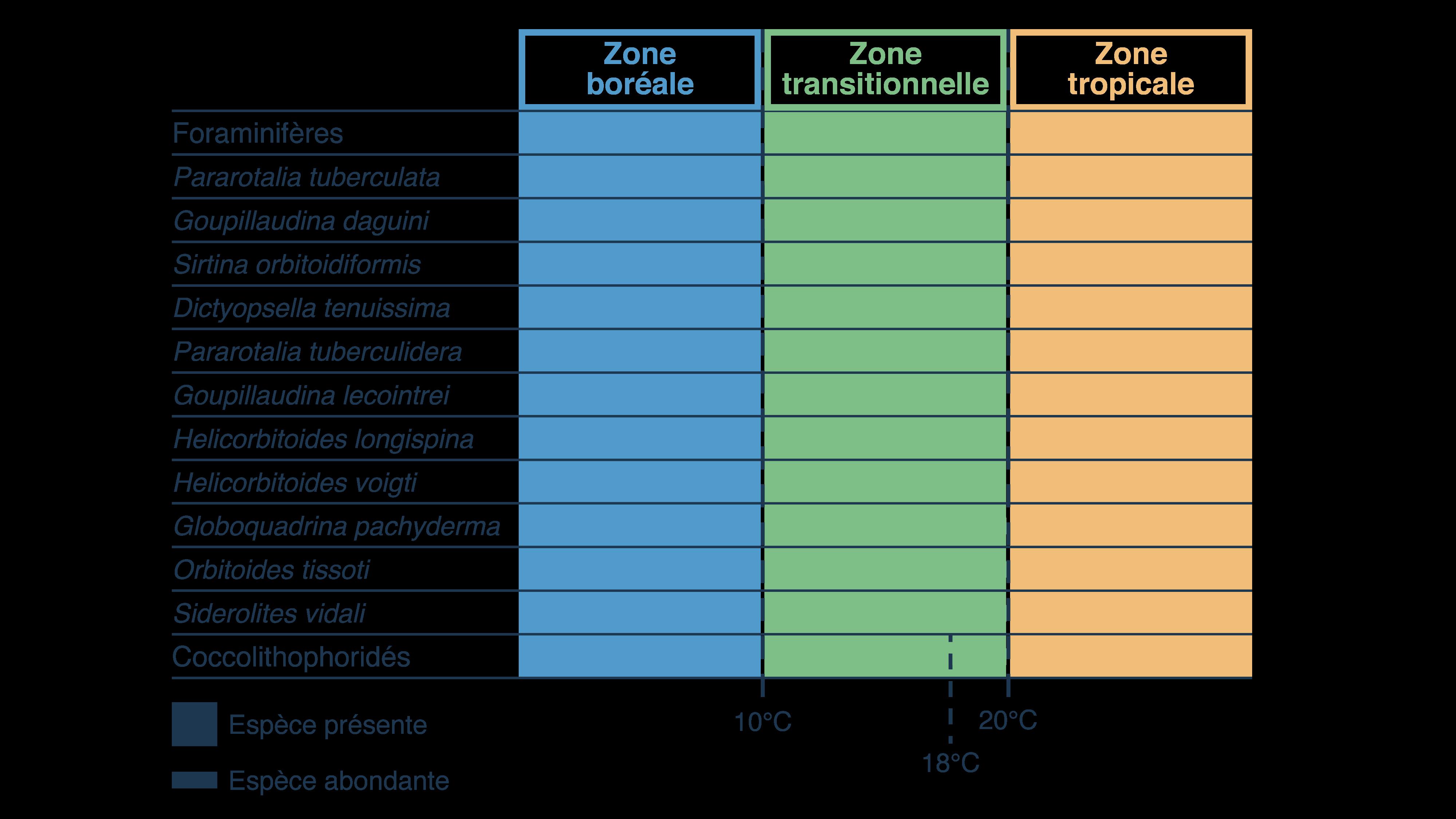 Corrélation entre zones climatiques et présence de microfossiles