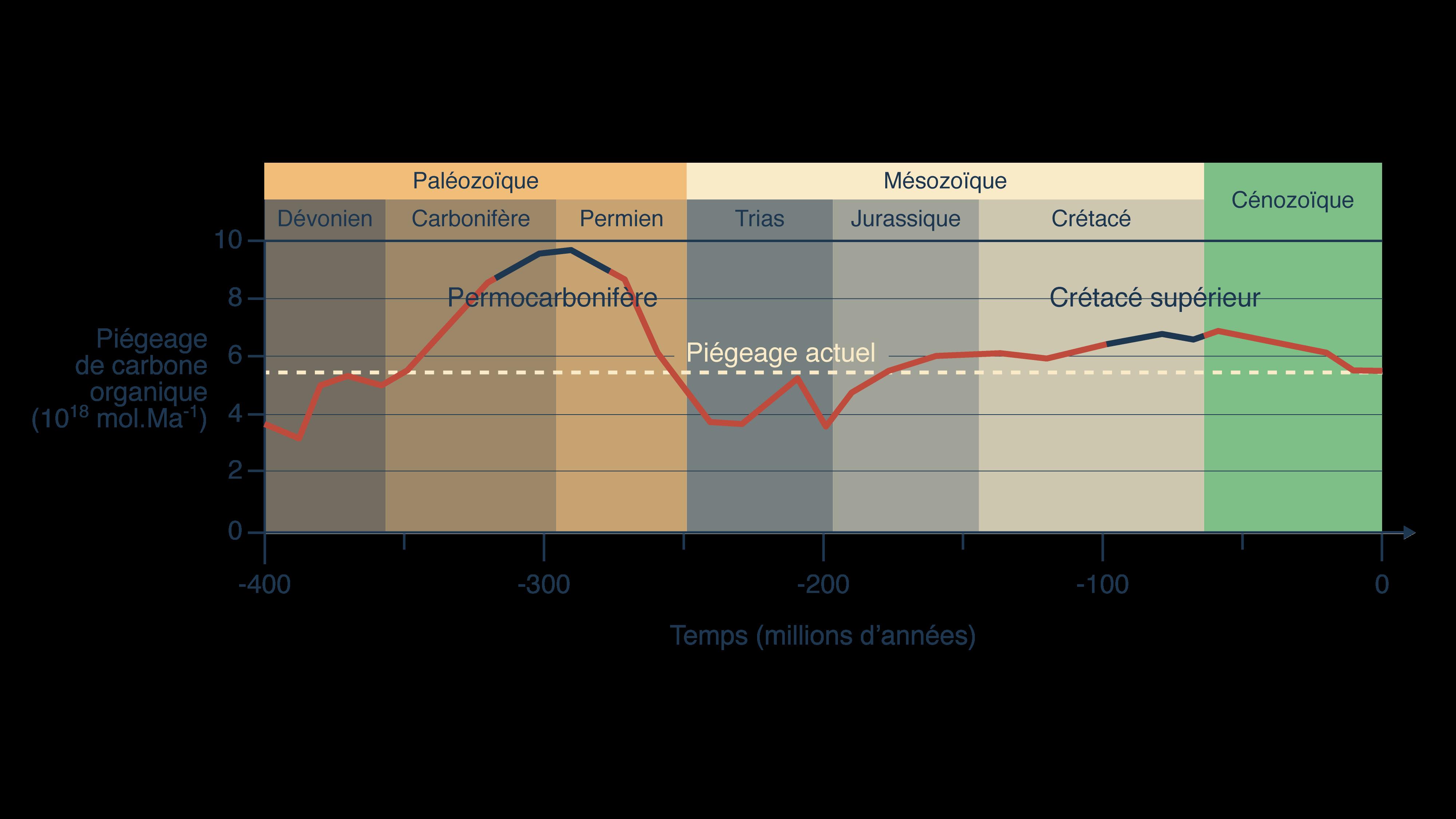 Piégeage du carbone par fossilisation en fonction du temps