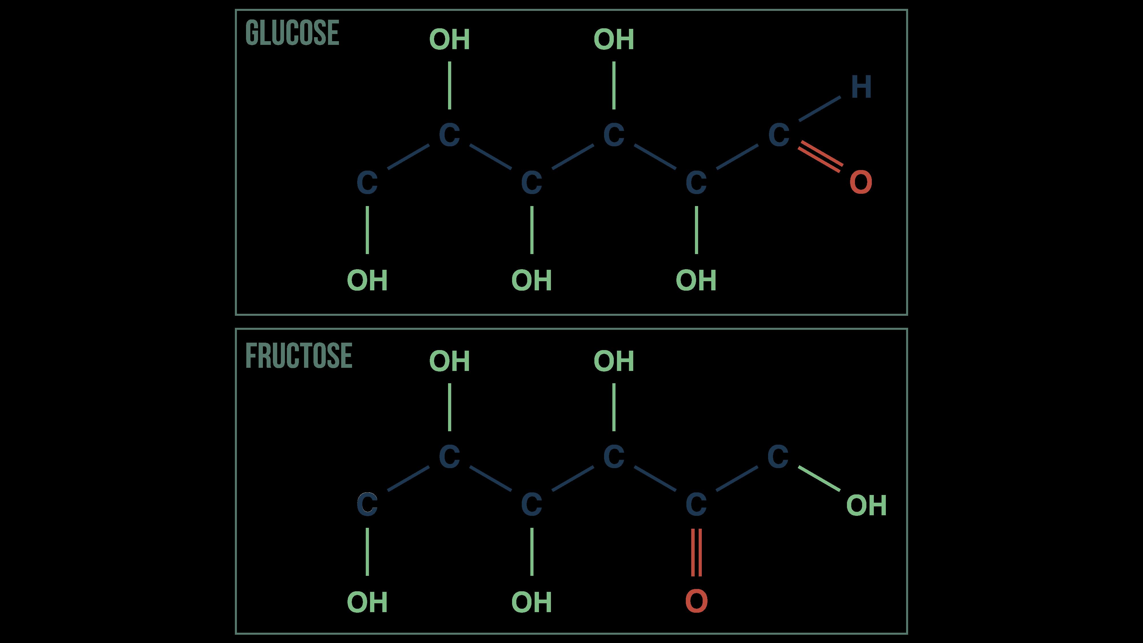 Représentation du glucose et du fructose