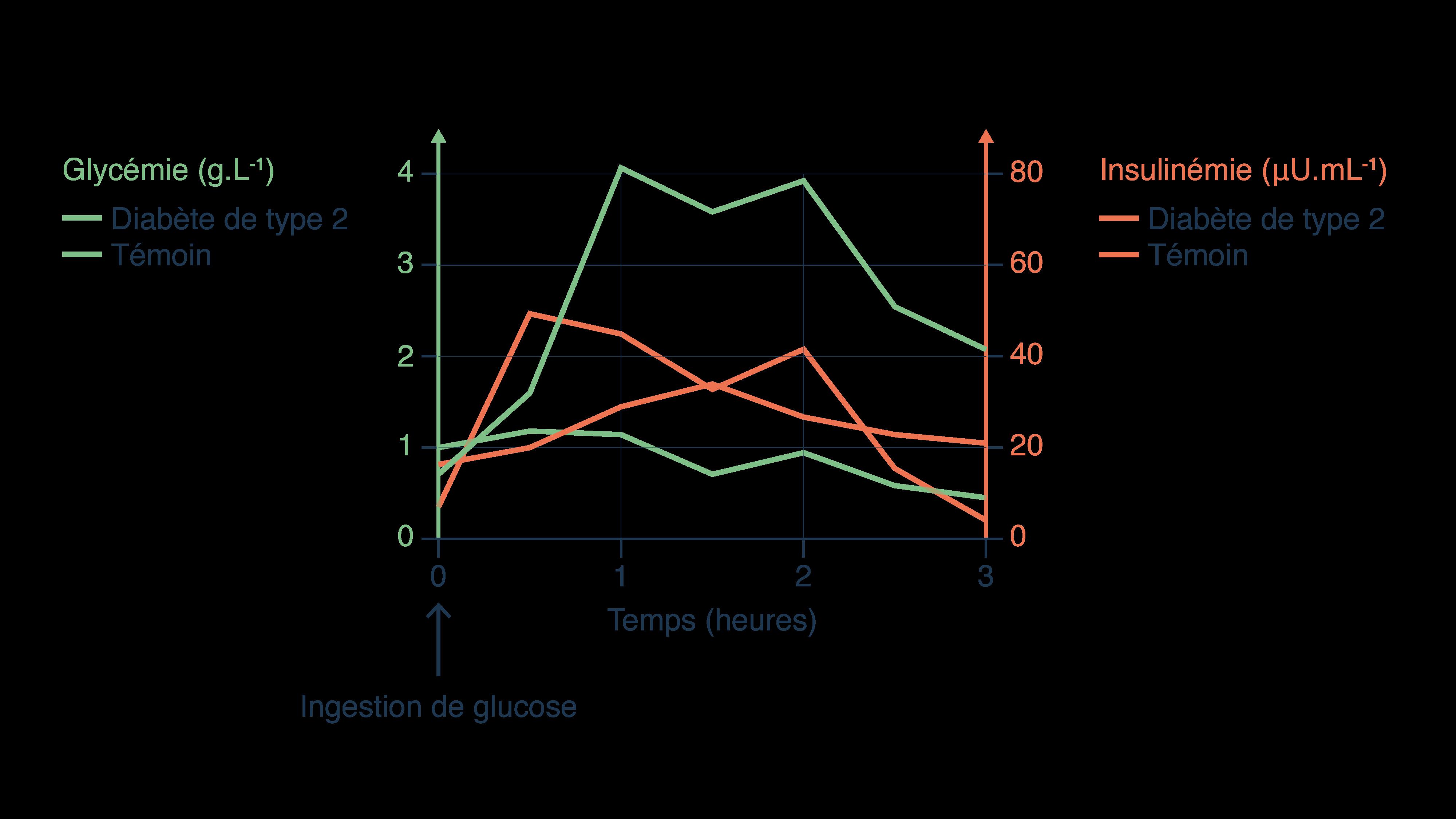 Comparaison de la glycémie et l'insulinémie chez un individu témoin et chez un individu atteint d'un diabète detype2
