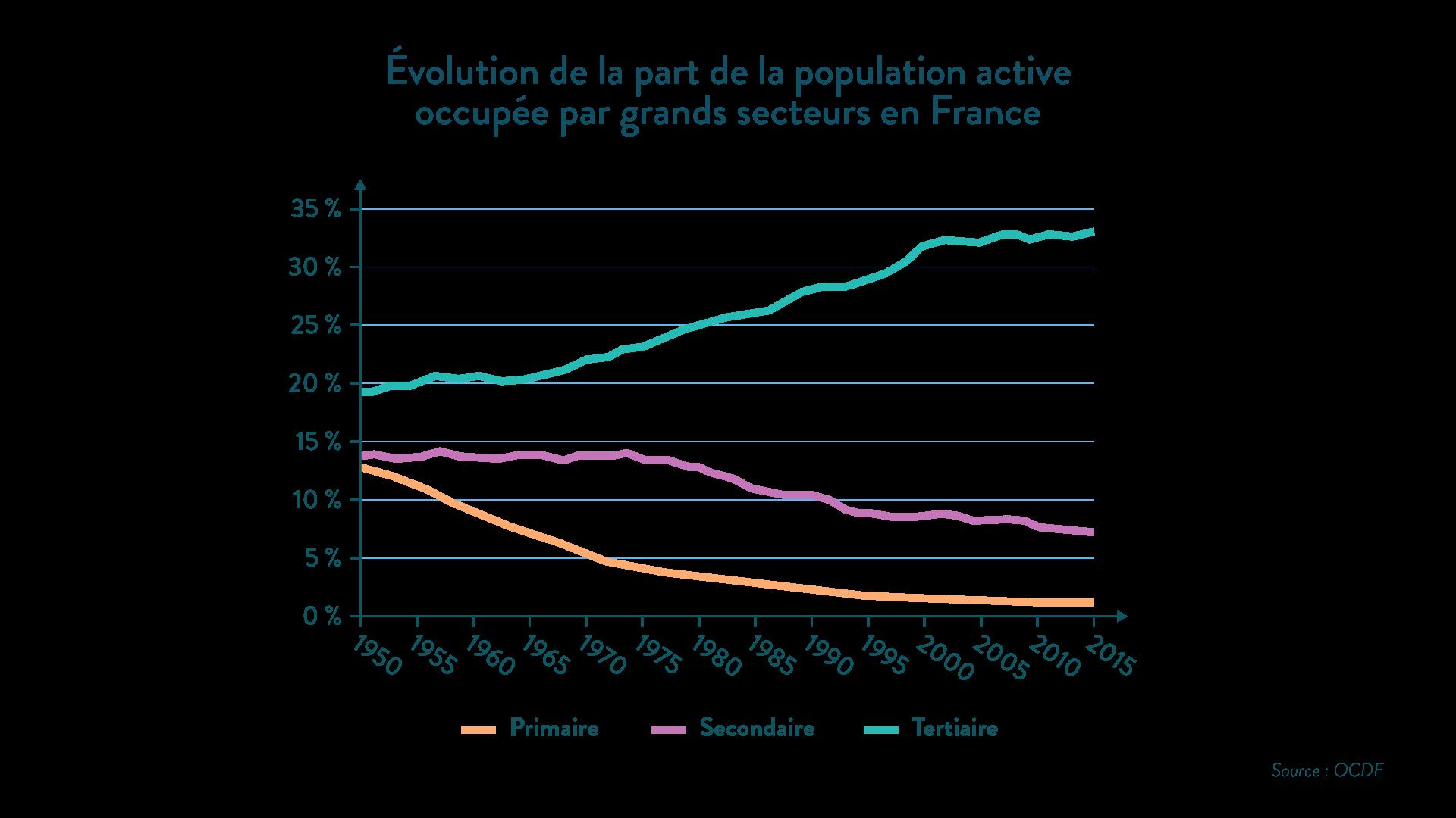 Évolution de la part de la population active occupée par grands secteurs