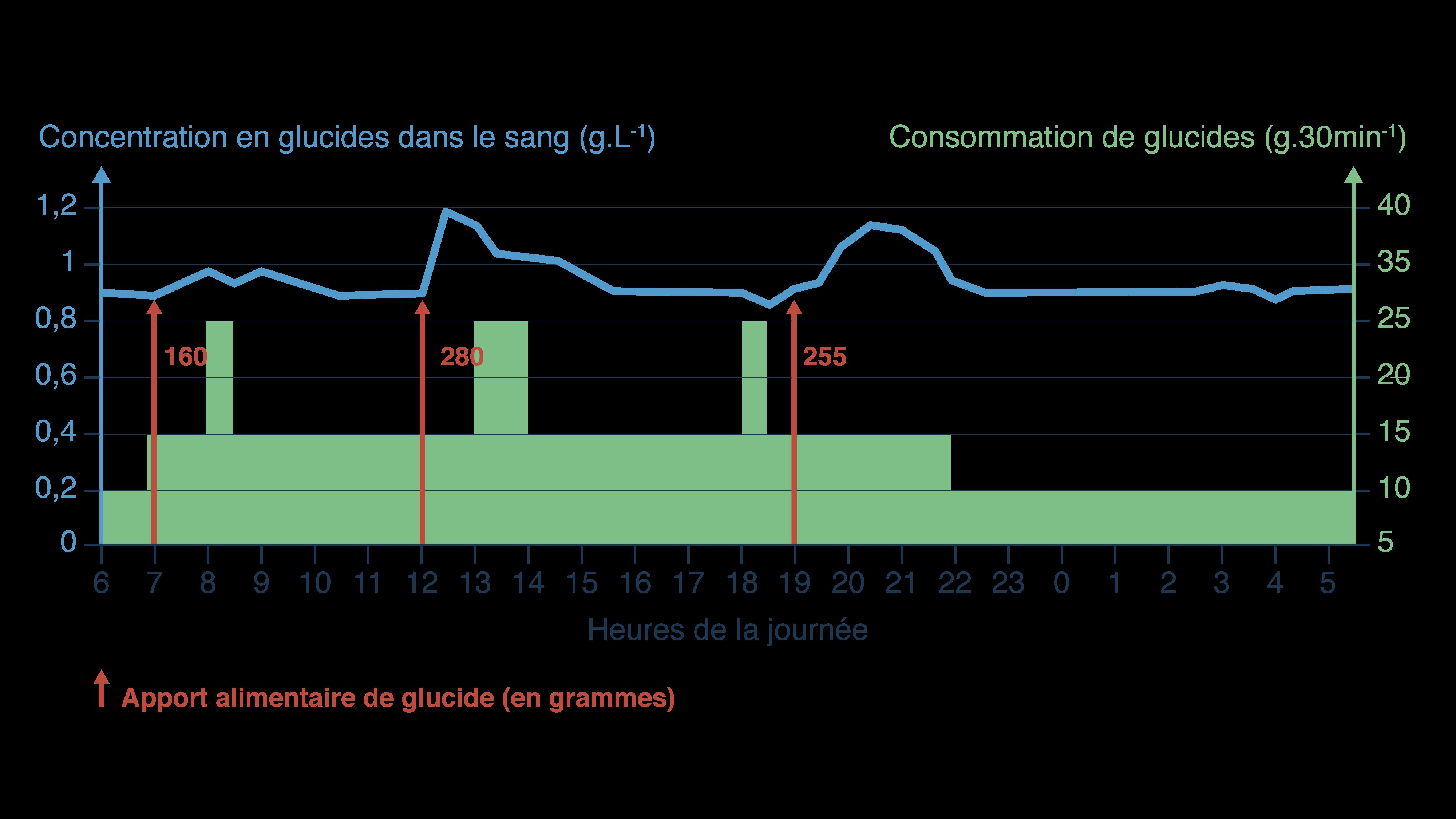 Graphique du système de régulation de la glycémie-svt-terminale-s-schoolmouv